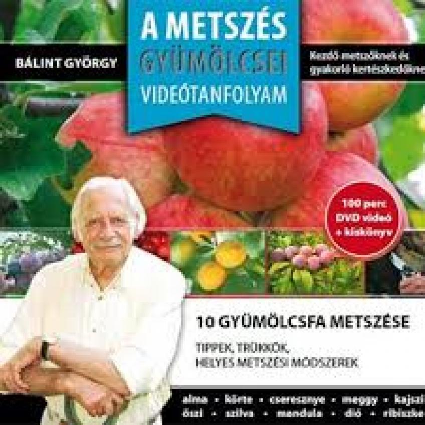 Bálint Gazda - A Metszés Gyümölcsei