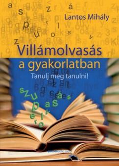 Lantos Mihály - Villámolvasás a gyakorlatban