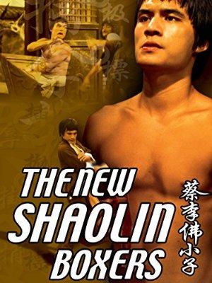 Az új shaolin harcos