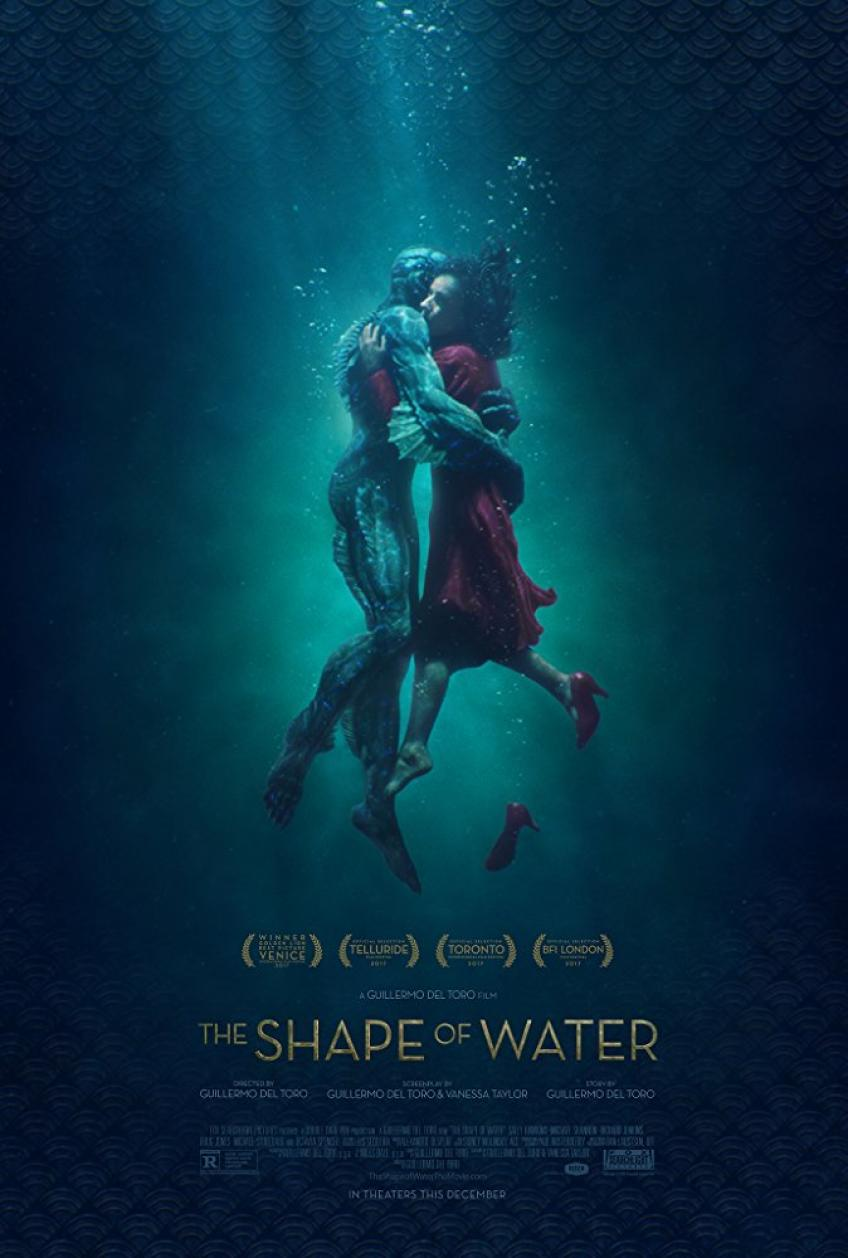 The.Shape.of.Water.2017.RETAiL.HUN.DVDRip.XviD-SKS