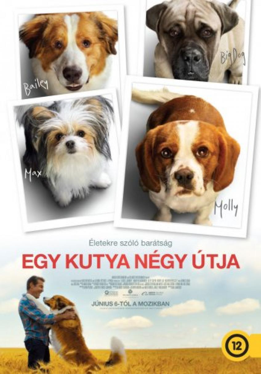 Egy kutya négy útja