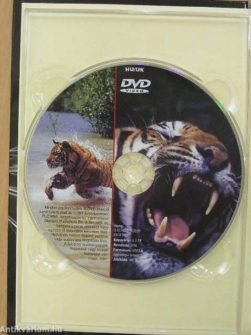 Mocsári tigris