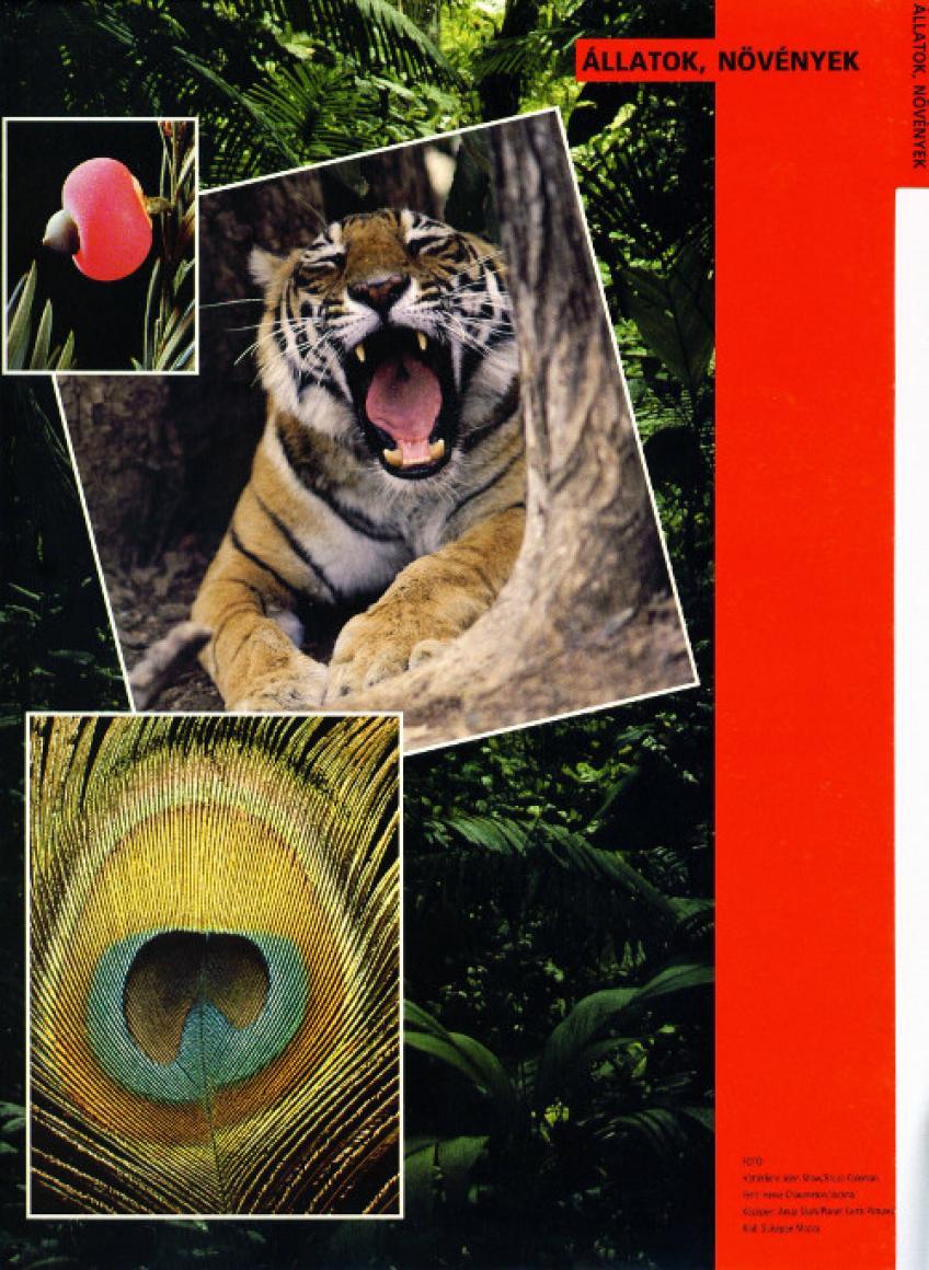 A tudás fája/ Állatok és növények