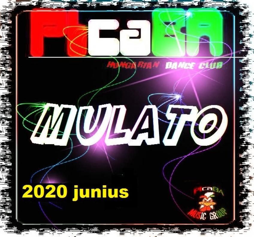 VA - PIcaBA Group - VA Mulato [2020] junius