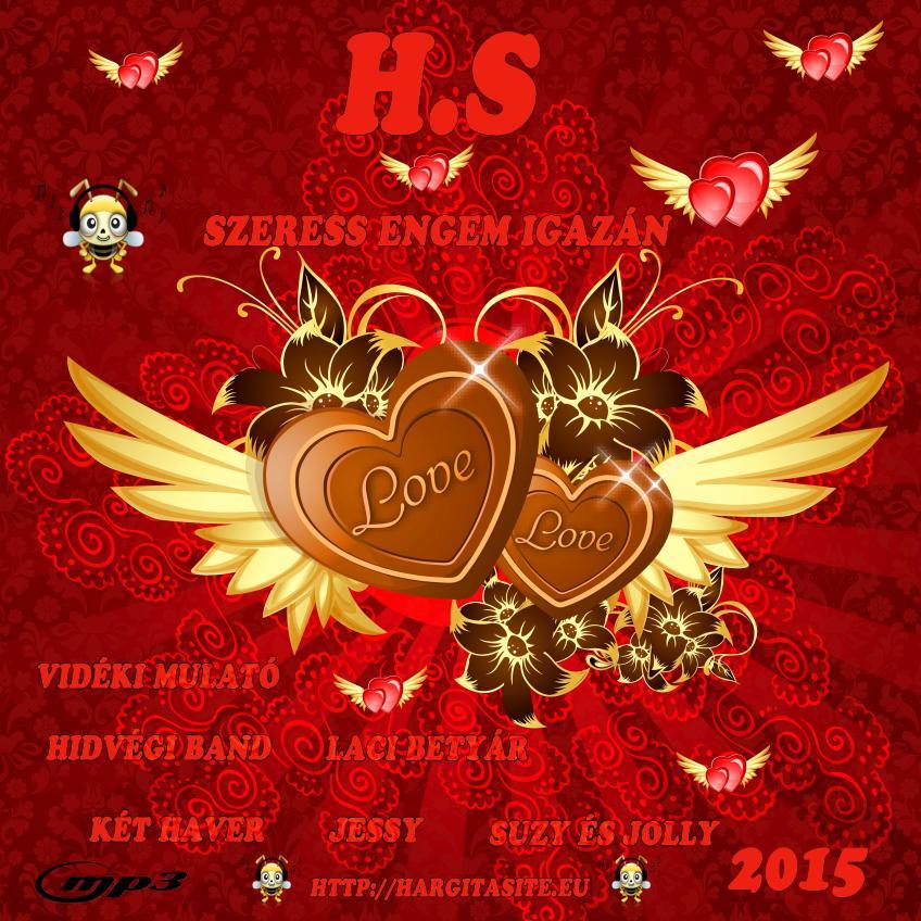 H.S.-Szeress engem igazán (2015)