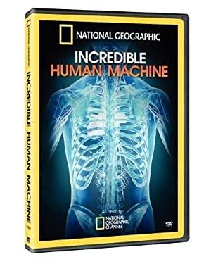 Lenyűgöző gépezet - A működő emberi test