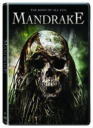 Mandragóra