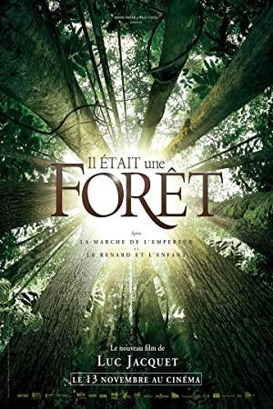 Volt egyszer egy erdő