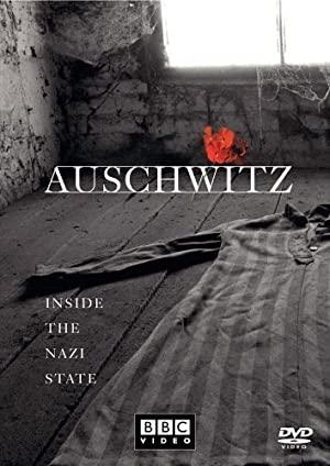 Auschwitz - A végső megoldás