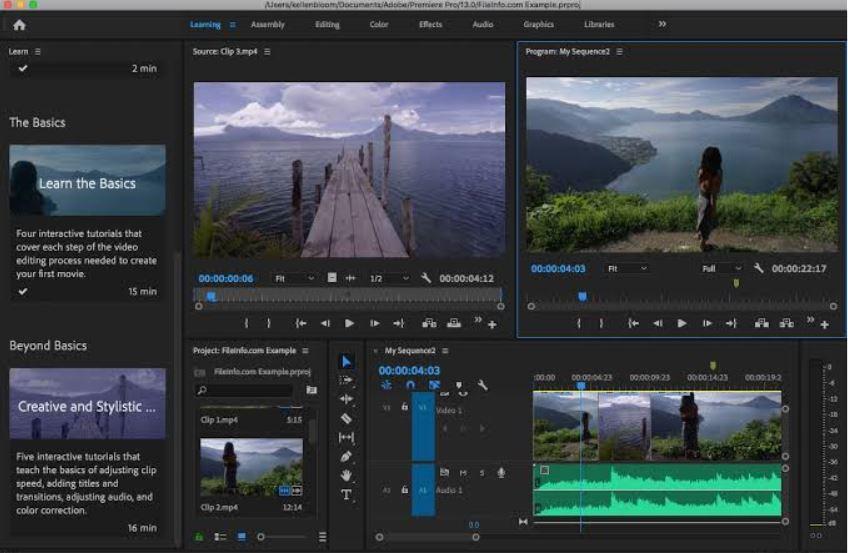 Adobe Premiere Pro 2020 v14.0.3.1 (x64) (Pre-Activated)