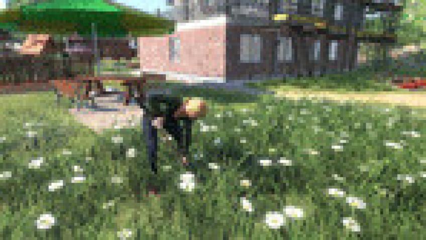 Farmers.Dynasty-CODEX